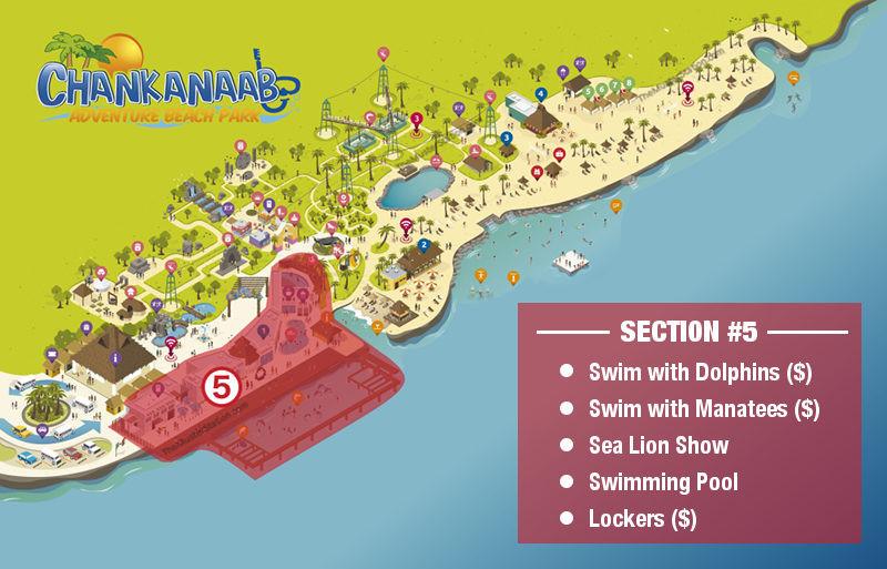Chankanaab Park Map - Dolphine Swim Manatee Swim Sea Lion Show