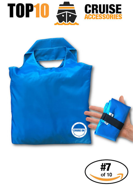 Travel Tote Collapsible